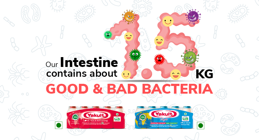 Intestine contains Good and Bad Bacteria
